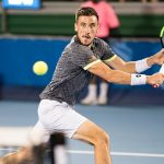 Harrison Falls to Dzumhur